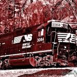 Carmine Train
