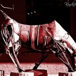 Carmine Bull
