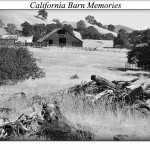 California Barn Memories